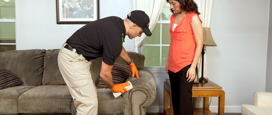 Dothan, AL carpet upholstery cleaning