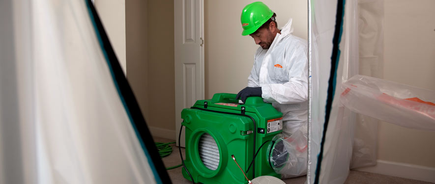Dothan, AL mold cleanup